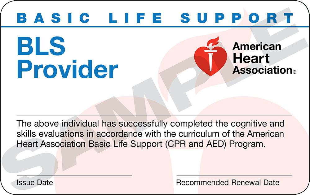 Basic Life Support Bls Provider Trio Safety Cpr Aed